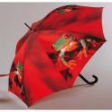 Partnerské deštníky